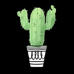 plants-03